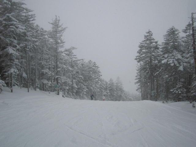 お洒落な樹氷コースっ♪