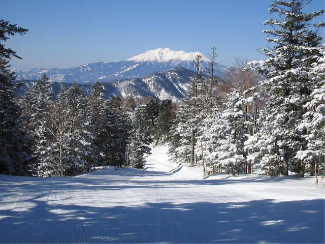 樹海コースから見る御嶽山っ♪