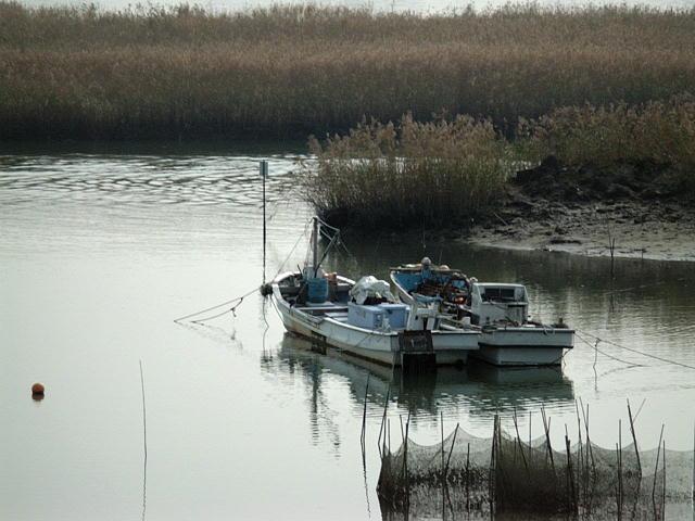 堰堤を渡りきったところから見えていた舟♪