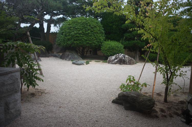 お庭の様子♪