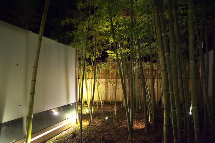 縁側から見た夜のお庭♪